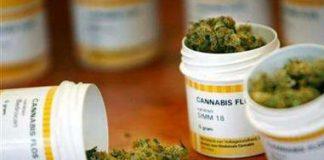 Una nuova ricerca smentisce due miti sulla marijuana medica